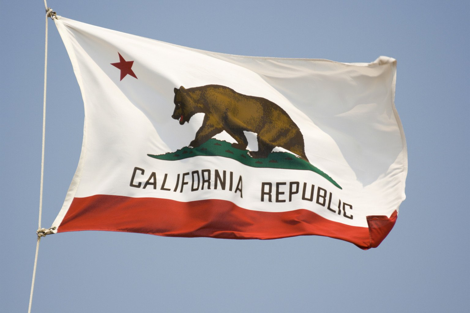 Calif Public School Caught Working With Islamic Terror Front Group