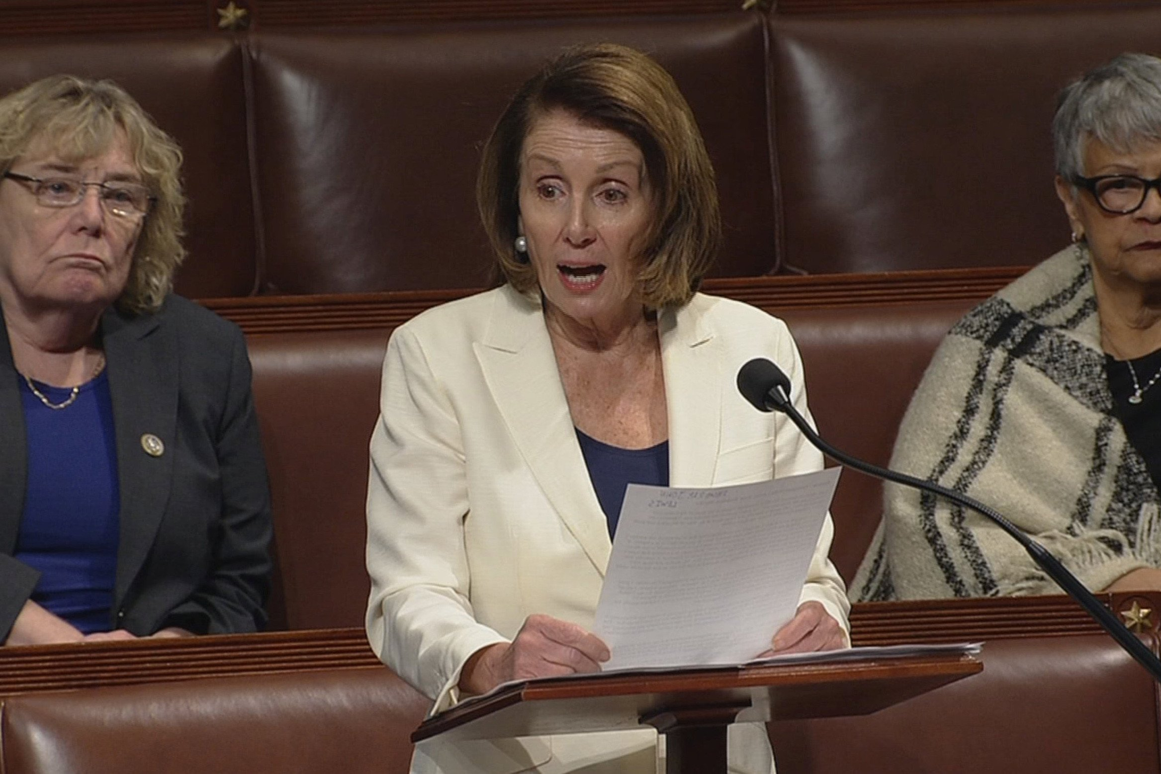 Pelosi Trumps Proposed Border Wall Is Too High Obnoxious in a Civilized Society VIDEO