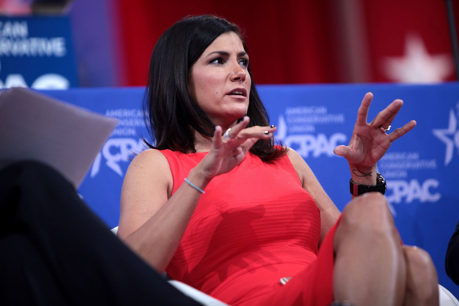 Loesch Blasts CT Gov for Calling NRA a Terrorist Group Hes Smearing Millions of LawAbiding Americans VIDEO