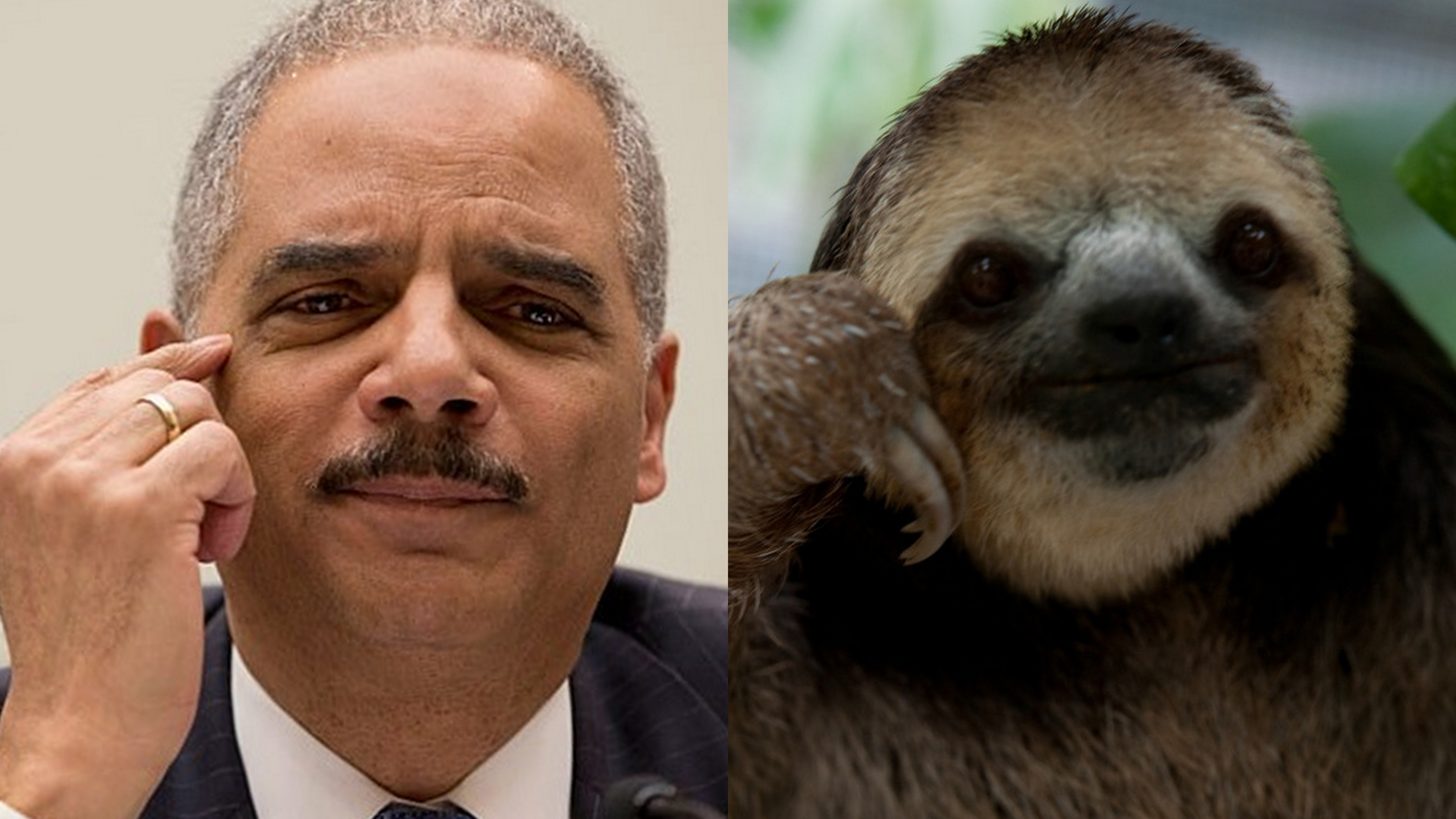 Political Sloths WashedUp Bureaucrats and BList Lawmakers Rush to Defend Disgraced Andrew McCabe Here Are Their Nonsensical Rants