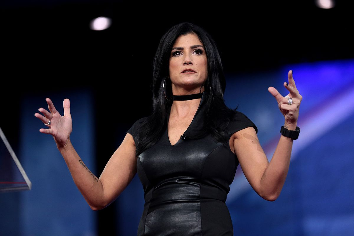 Dana Loesch Crushes Bill Maher After He Calls Her A Showbiz Wannabe VIDEO