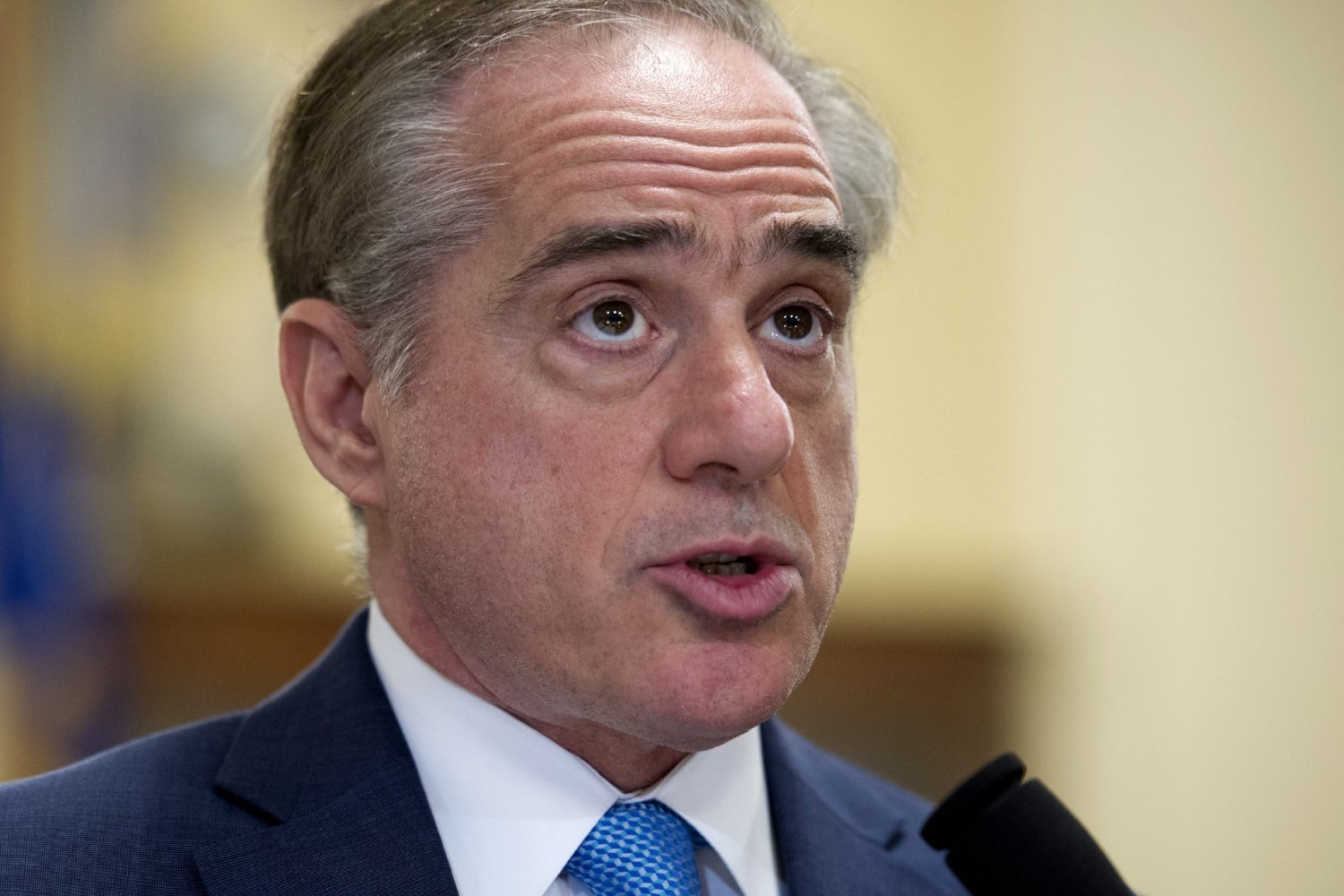 Agent Orangerelated health care for Vietnam vets should be expanded VA boss Shulkin says