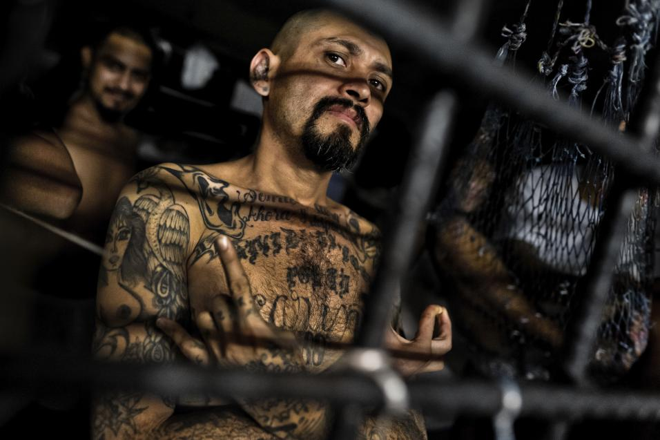 The FBI protected  paid 130K to MS13 gang leader who ordered the murder of a 13yrold Girl