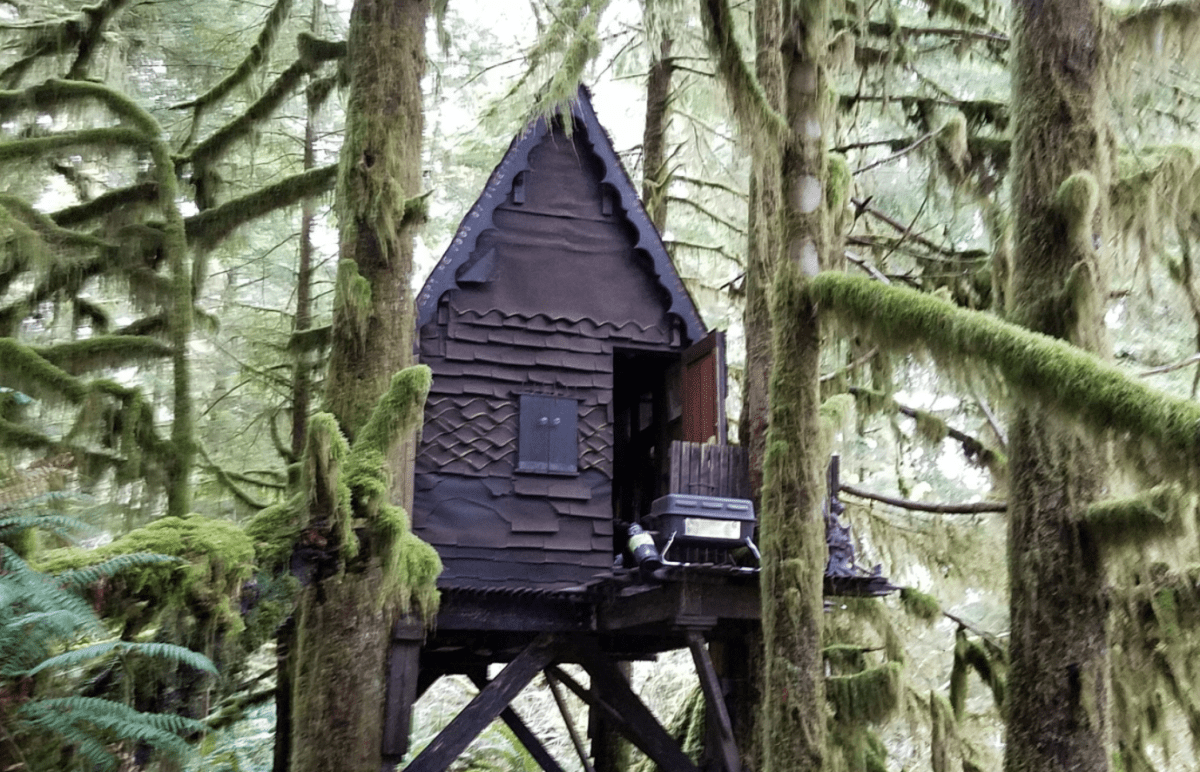 Man charged after gingerbread treehouse full of child porn found in woods