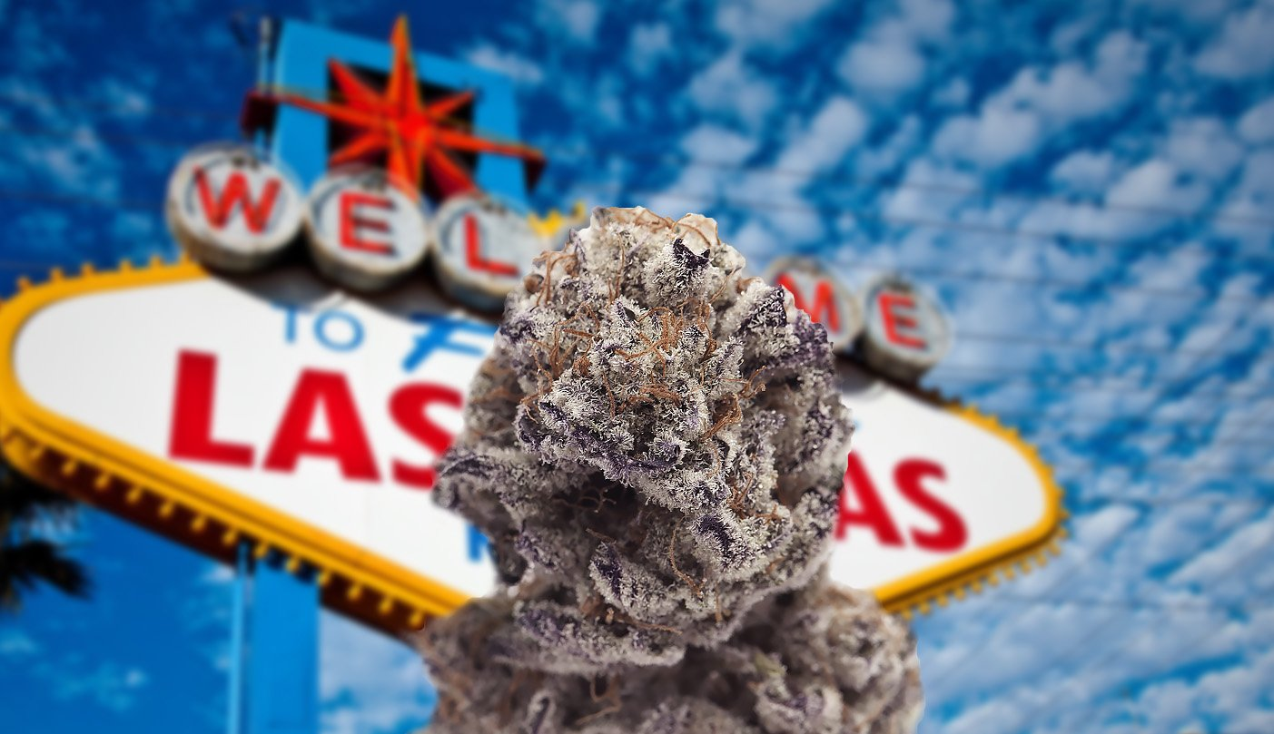 Nevada makes nearly 36 million in taxes off recreational marijuana